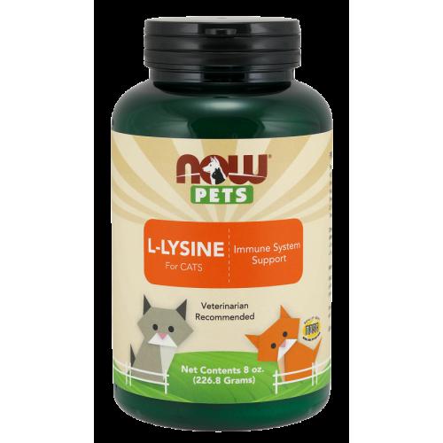 NOW Pets - L-Lysine for Cats Powder - 226 g