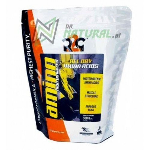 R2G - Amino High Powered - 500 g
